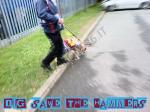 Cane con completino West Ham United